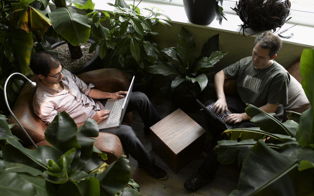 Nella giungla del lavoro… scegli lo SMART working